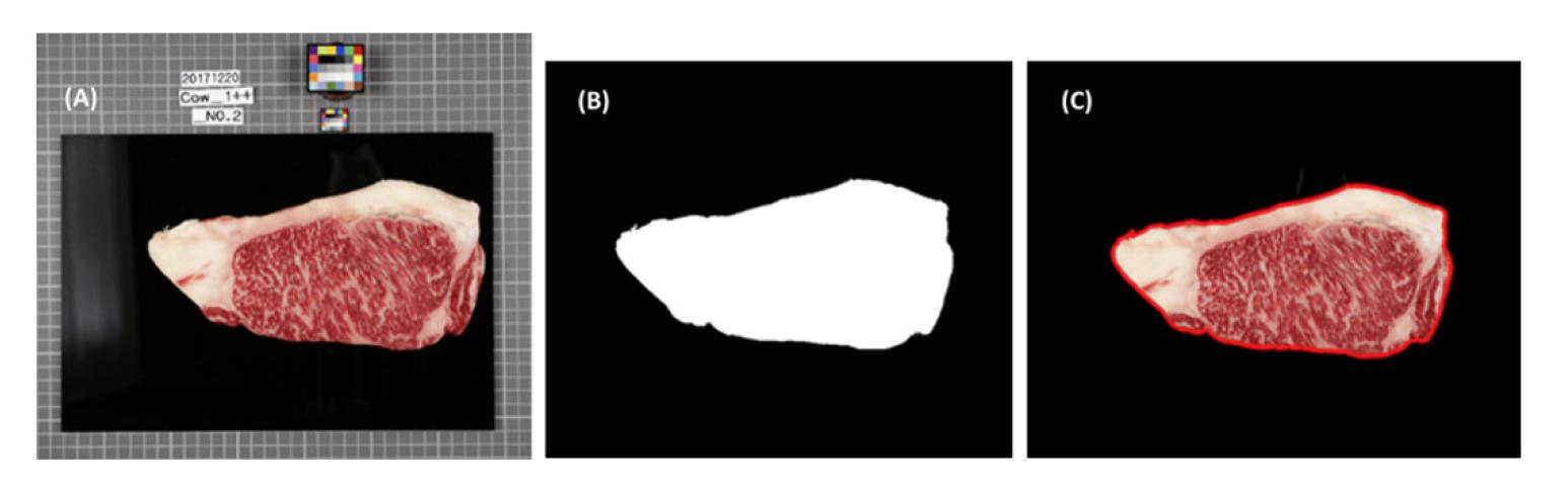 http://dam.zipot.com:8080/sites/kjoas/images/N0030470434_image/Figure_KJOAS_47_04_34_F5.png